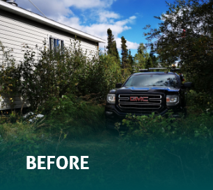 Before - Car hidden by trees on the side of a house